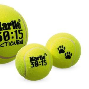 Koiran lelu iso tennispallo