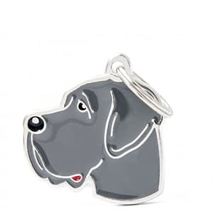 Nimilaatta kaiverruksella - koirarotu-nimilaatta tanskandoggi sininen