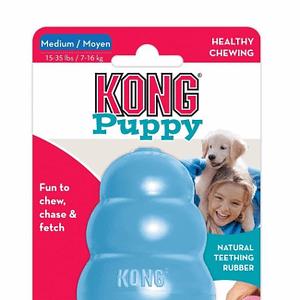 Koiran Lelu Kong Puppy Sininen